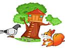 قصه کودکانه کبوتر و سنجاب