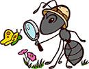 قصه کودکانه هوس های مورچه ای
