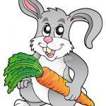 قصه کودکانه خرگوش مهربان و سوپ هویج