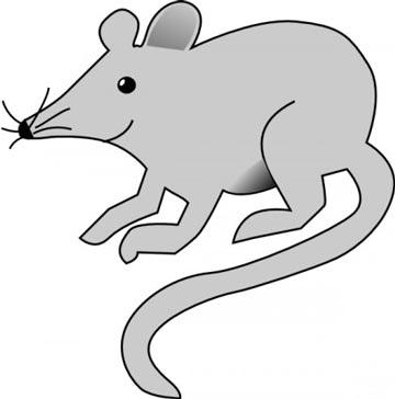 قصه کودکانه موش موشی