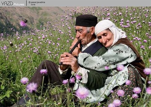 عکس:عاشقانه ای کم نظیر