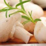 خواص قارچ به عنوان غذا