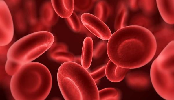 چه چیز باعث کم خونی می شود؟