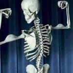 چگونه استخوانهای قوی داشته باشیم