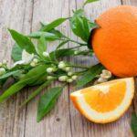 مقایسه نارنج و آب نارنج