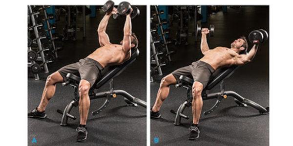 حرکات کششی عضلات سینه