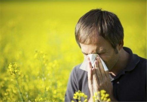 آلرژیهای پاییزی