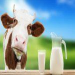 شیر سرد فواید بیشتری نسبت به شیر گرم دارد