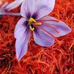 گیاهی که گردش خون را آسان میکند