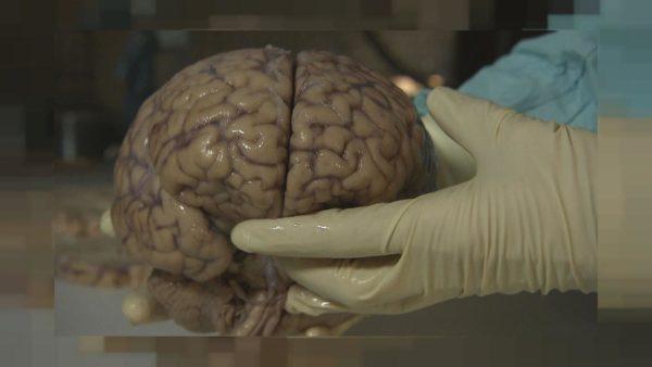 مصرف این قرص موجب از دست دادن حافظه تان می شود