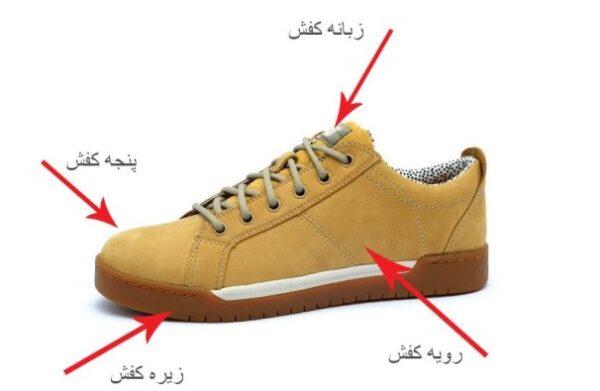 رابطه سایز کفش با طول عمر