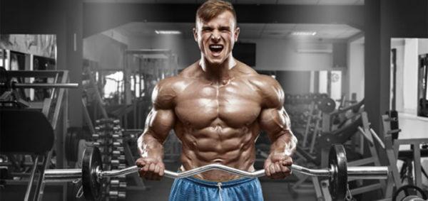 عضلات ساعت دار و واکنش های مختلفی که از خود نشان میدهند را بشناسید