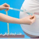 چاقی شکم در اثر خوردن این مواد غذایی است / آنها را کنار بگذارید