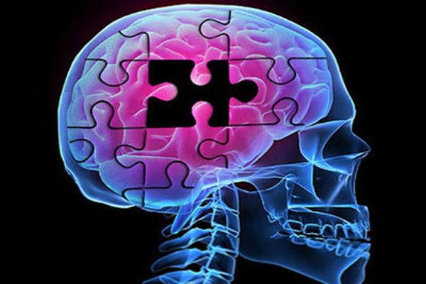 آلزایمر در کمین چه افرادی است؟