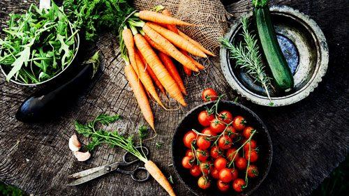 گیاه خواری یا گوشت خواری