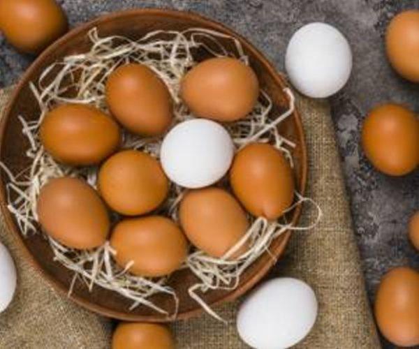 خواص تخم مرغ محلی