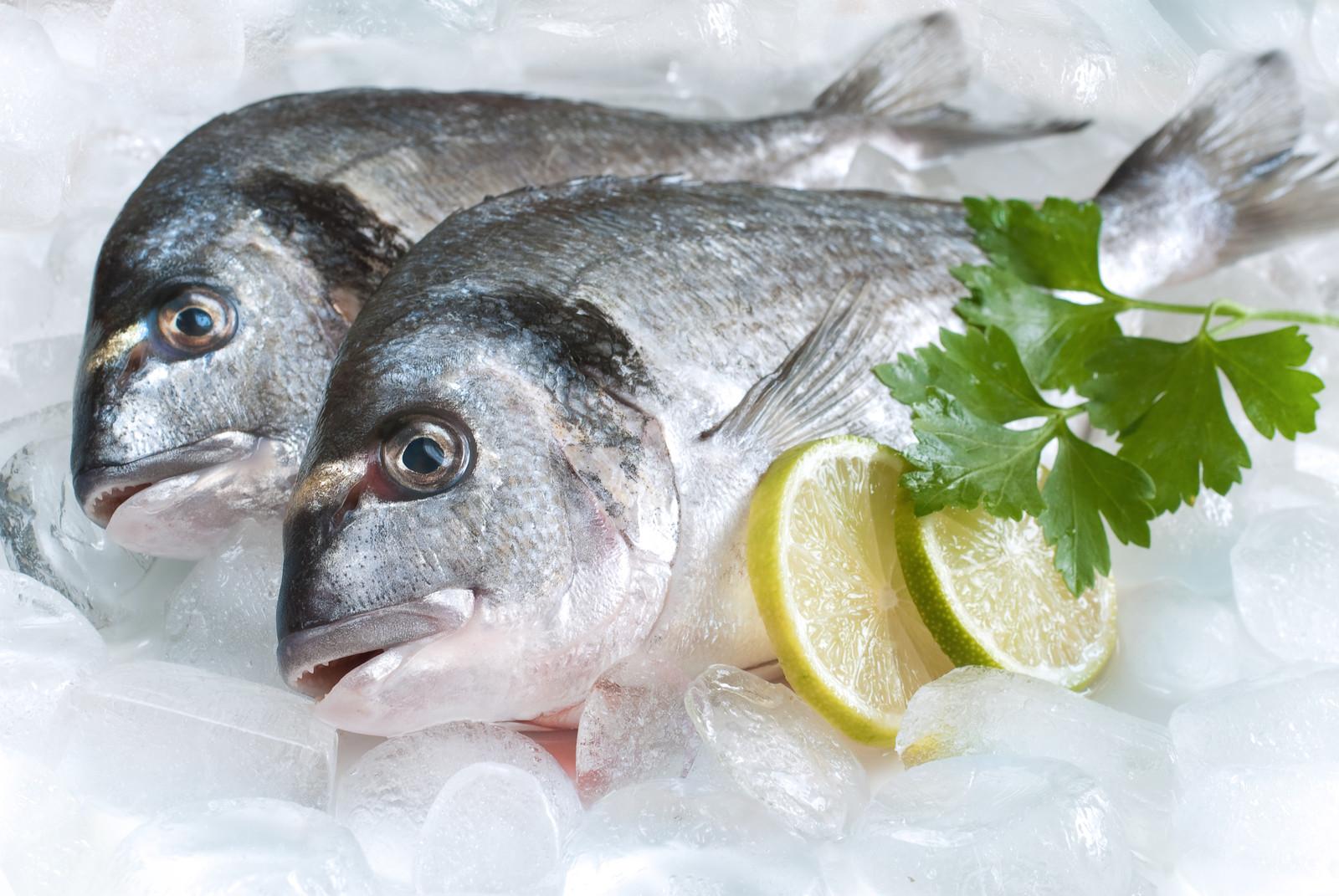 ماهی سالم و تازه را با این ترفندها تشخیص دهید و بخرید