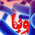 بیماری وبا چگونه است و از چه راههایی به انسان منتقل میشود؟