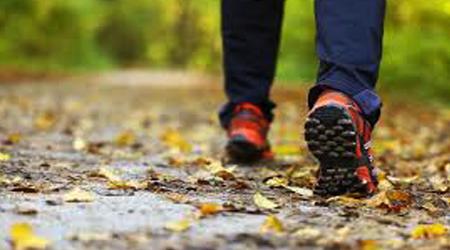 فایده پیادهروی در سر بالایی