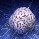 بلایی که اینترنت زیاد بر سر مغزتان می آورد