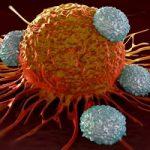 درمان سرطان در کمتر از دو روز با این روش