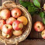 بهترین مواد غذایی برای درمان یبوست های طولانی