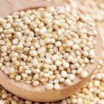 با خواص کینوا یا خاویار گیاهی بیشتر آشنا شوید
