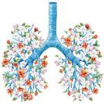 روشهای اثبات شده برای سلامت ریه ها بر اساس طب سنتی چین