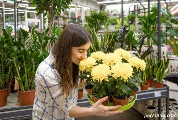 درمان افسردگی با گل