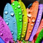 رنگ درمانی و خواص درمانی رنگها