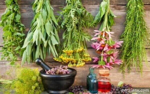 این گیاه دارویی برای رفع افسردگی و دلهره