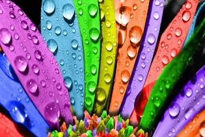 روانشناسی رنگها در روحیه افراد
