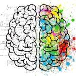 کدام نیمکره مغزتان فعال تر است؟ + تست روانشناسی