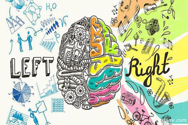 تست نیمکره مغز