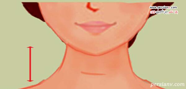 شخصیت شناسی از روی گردن