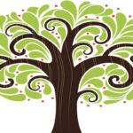 شخصیت شناسی از روی درخت و کشف بزرگترین نقطه قوت تان