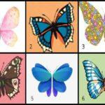 تست نقاط ضعف و قوت با انتخاب پروانه مورد علاقه تان