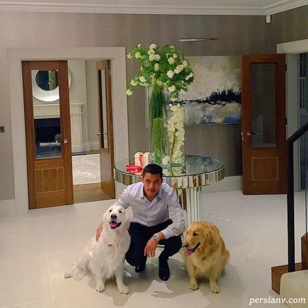 باز هم الکسیس و سگهایش