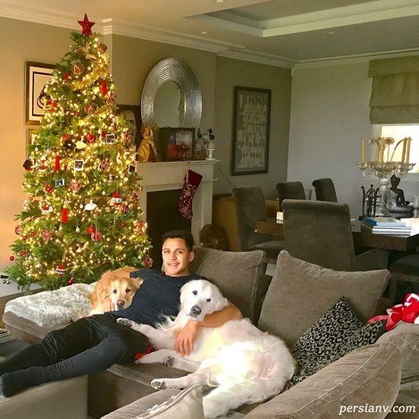 الکسیس در کنار درخت کریسمس