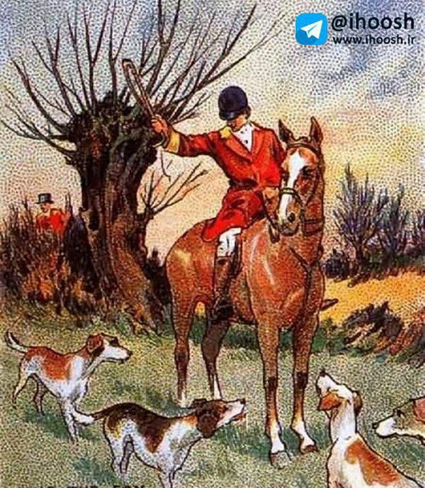 تست هوش تصویری شکارچی و روباه