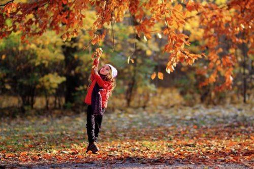 اس ام اس و متن های زیبای پاییز 6