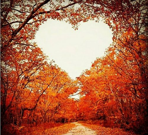 اس ام اس و متن های زیبای پاییز 7