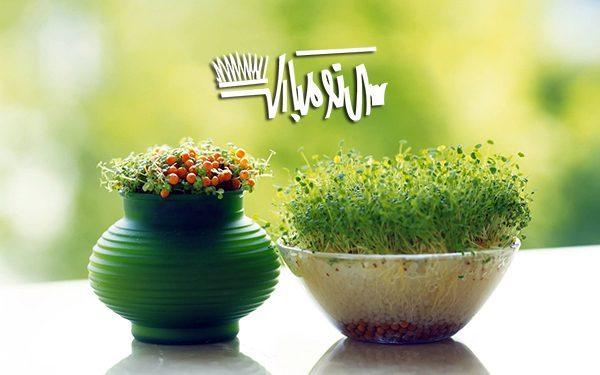 اس ام اس خنده دار عید نوروز ۹۷ (۱)