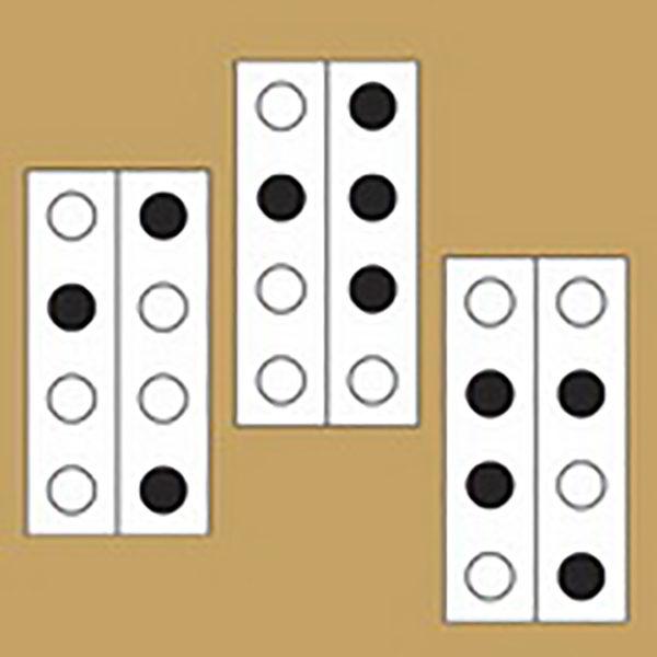 تست هوش جالب | کدام یک را از بقیه جدا می کنید؟