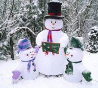 تست هوش تصویری | آخرین روزهای برفی سال!