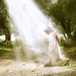 اس ام اس مناجات با خداوند (۱۵)