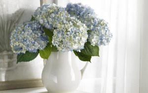 داستان زیبای دست گرفتار در گلدان
