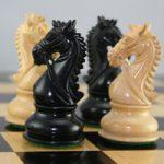 معمای ریاضی | حرکت اسب ها