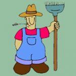 معمای المپیادی | کشاورز نمونه