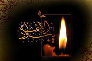 اس ام اس شهادت امام محمد تقی (ع) (۳)